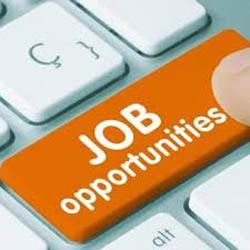 Data Entry Administrator Jobs